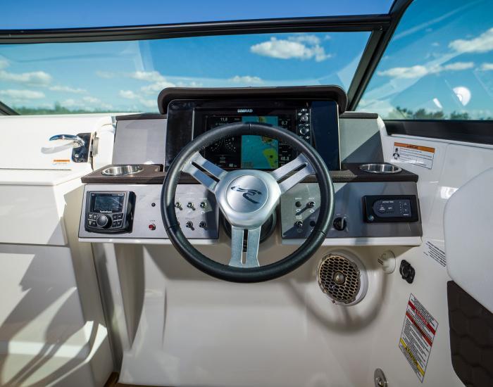 Sea Ray 250 SDX HB